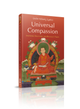 3d-universal-compassion-02-2012