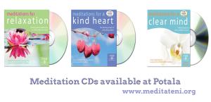 Flier for CDS